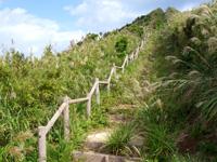 渡名喜島の西森園地/西森 - 山頂まであと少し。雑草だらけです