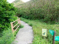 渡名喜島の西森園地遊歩道/登山道 - 案内もありますがハブ注意の方が気になるw