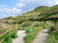 渡名喜島の西森園地遊歩道/登山道 - 左がワタンジ崎、右が西森園地への道