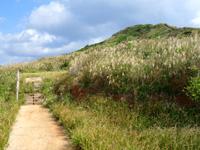 渡名喜島の西森園地遊歩道/登山道 - 序盤は楽々移動できますが・・・