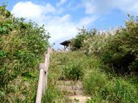 渡名喜島の西森園地遊歩道/登山道 - 頂上直前になるまで展望台は見えません