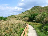 渡名喜島のサカシ散策道/散策路 - 西森園地の山を望みながら歩けます