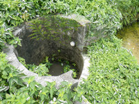 渡名喜島の水田/みふーだー - 井戸もありますが使われていないかな?