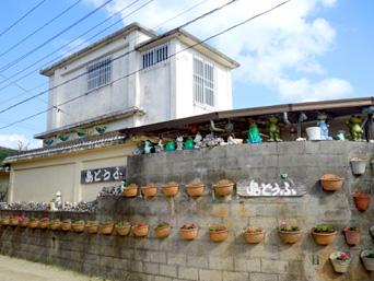 渡名喜島の島豆腐屋/島どうふ「壁いっぱいに花咲く植木鉢が!?」