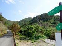渡名喜島の大岳山道西 - 道のりは1.2kmだが猛烈な勾配