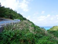 渡名喜島の大岳山道西 - 入砂島が望めます