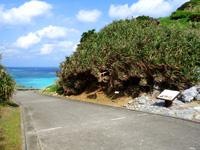 渡名喜島の大岳山道東 - 島尻毛入口もあるけど先の海に導かれる