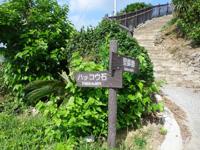 渡名喜島の里御嶽遊歩道/ハッコウ石/ナナマーイ石/ンチャプイ/シムガー - 「ハッコウ岩」とあるがどれが?