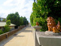 渡名喜島の渡名喜集落/重要文化財/重要伝統的建造物群保存地区 - フクギ並木も渡名喜集落らしい光景