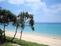 津堅島のトマイ浜/津堅ビーチ - ビーチには木陰も少しながらあります