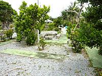 津堅島の愛の一族ガーデン