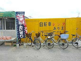 津堅島のあずまレンタサイクル「港の中のコンテナで営業しています」