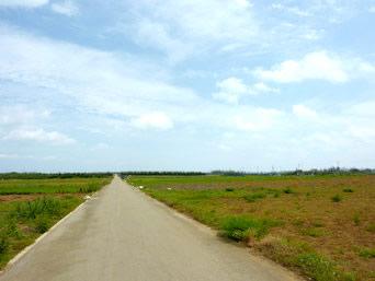津堅島のニンジン畑〜キャロットロード「島中央の真っ直ぐな道」