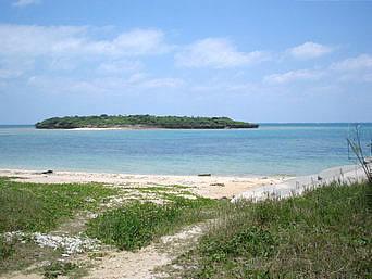 ヤジリ浜東