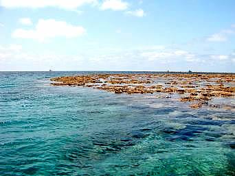 八重干瀬海上1