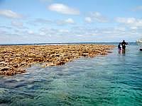 八重干瀬の八重干瀬海上1 - 上陸もできますが・・・