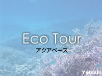 宮古列島 八重干瀬のアクアベースの写真