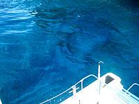 海の上から見た海底遺跡