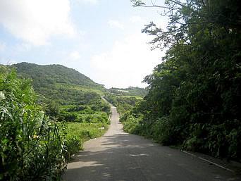 Dr.コトーの内陸の道と立体交差