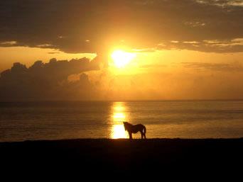 与那国島の馬鼻崎の朝日
