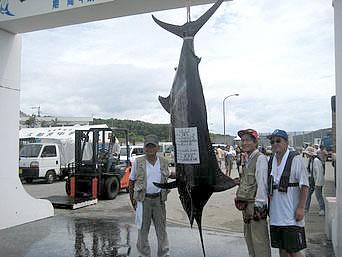 与那国島の久部良漁港 国際カジキ釣り大会「夏に行われる島の大イベント」