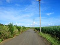 与那国島のシュガーロード/空港近くの裏通り - サイクリングには最適?