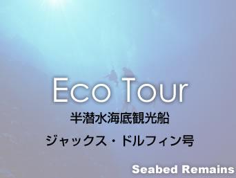 与那国島の半潜水海底観光船ジャックス・ドルフィン号「海底遺跡をグラスボートのみで見る」