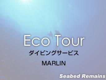 与那国島のダイビングサービス マーリン/MARLIN「祖内にあるショップで海底遺跡ツアーも有り」