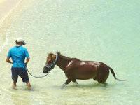 与那国島のナーマ浜の写真
