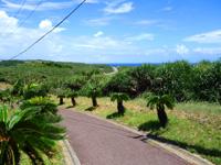 与那国島の西崎/いりざき - 最西端の岬は坂の上にある!