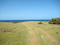与那国島の馬鼻崎 - 北牧場の轍をたどって行きましょう