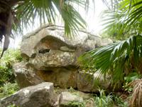 与那国島の人面岩/志木那島神社 - 草むらを抜けるとこんな感じ