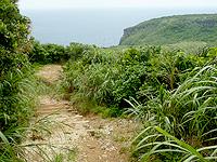 与那国島の人面岩/志木那島神社 - 下る階段があったら行き過ぎた証拠