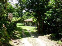 与那国島の与那国岳/満田原森林公園 - 別の入口からなら公園へダイレクト