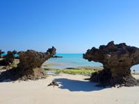 与論島の尾びれ岩/ハート岩 - 他にもいろいろな形の岩があります