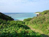 与論島のヨロン駅先のビーチ - 行き方はヨロン駅手前の草むらからがお勧め