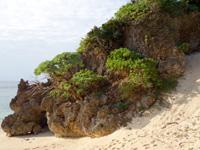 与論島のヨロン駅先のビーチ - 砂の山があるけど登った先には何もない(笑)