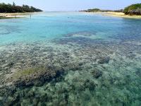 与論島の皆田海岸 - 海の透明度は抜群です