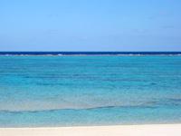 与論島の黒花海岸 - この浅瀬の海に出る模様が黒花の特徴!