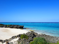 与論島の寺崎海岸/映画「めがね」メインロケ地 - 砂浜は幅は狭いが奥行きが長い