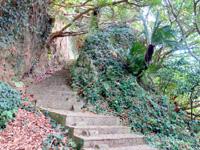 与論島の与論城跡登山道/遊歩道 - 大きな岩の横に入っていきます