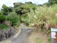 与論島の与論城跡登山道/遊歩道 - 下の入口はこんな感じ