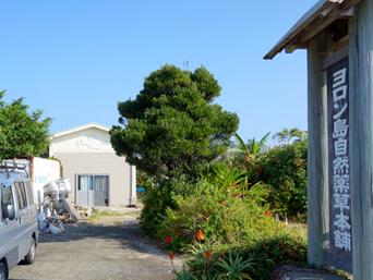 与論島のヨロン島自然薬草本舗(店舗は茶花市街へ移転)「赤崎近くの建物はこんな様子」