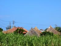 与論島の与論民俗村/民族村 - 外から見えるのは屋根のみ
