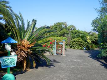 与論島のYoron Seaside Garden