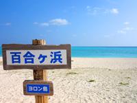大金久海岸/百合が浜入口