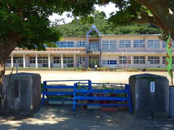 請島の池地小中学校/デイゴ並木「請島唯一の学校」