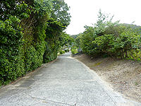 請島の池地集落 - 細長い集落に伸びる道