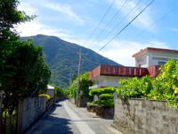 請島の池地集落 - 集落には石垣とガジュマルが目に止まります