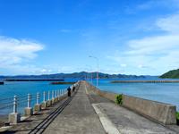 池地港(請島西の玄関口)
